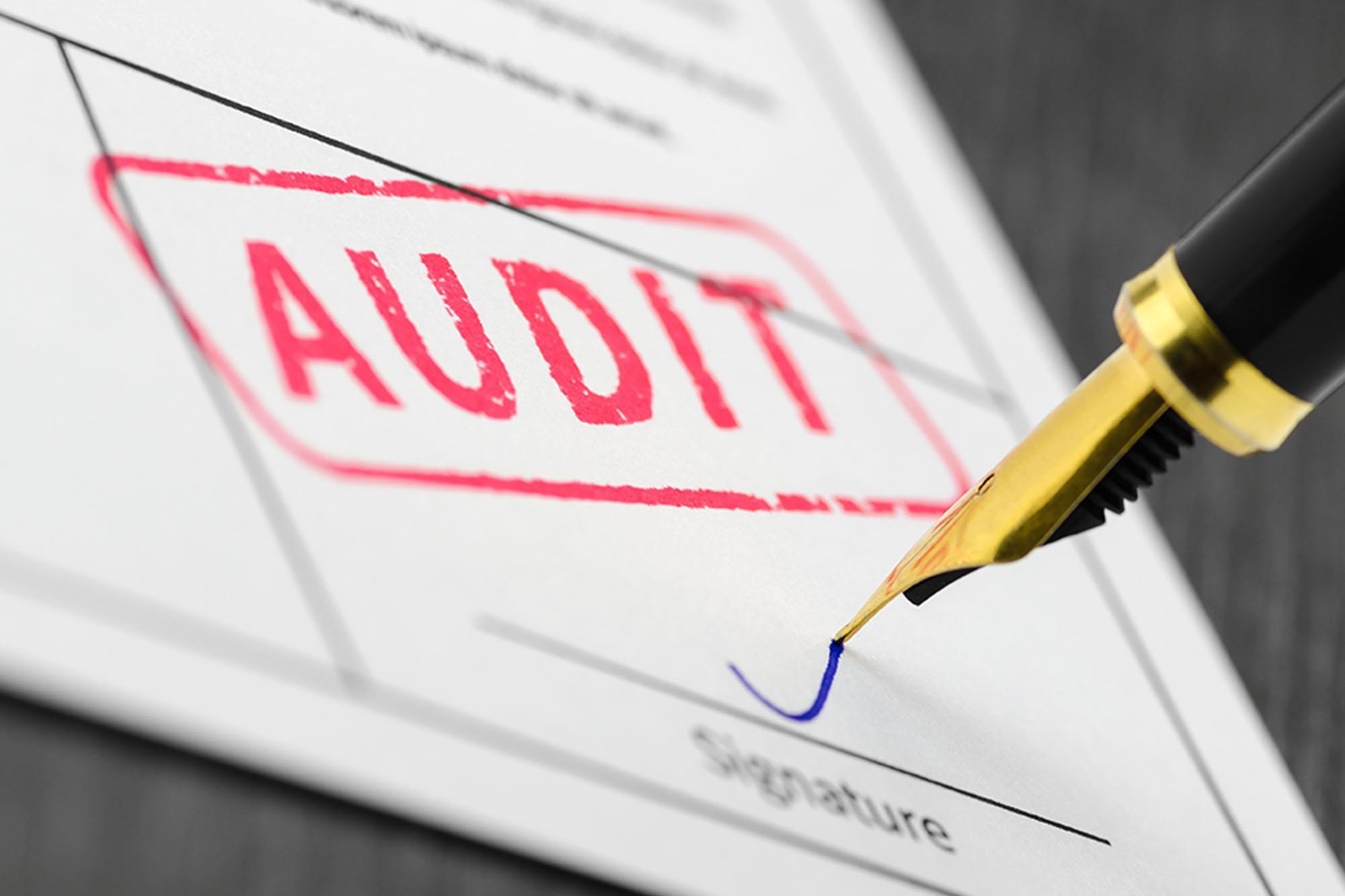 Audit Opinion and their Description